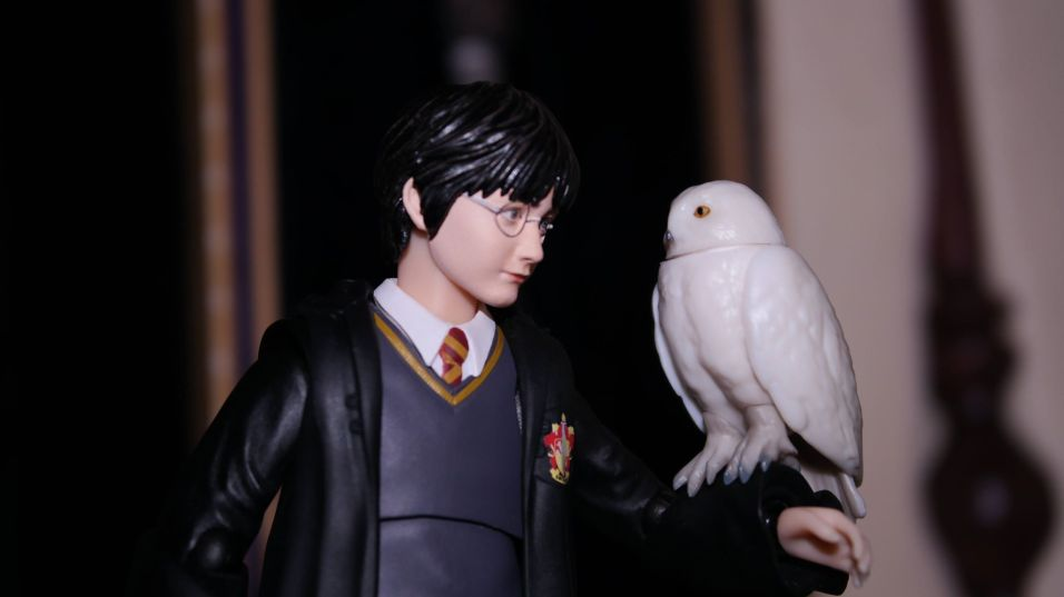 FOTF S.H Figuarts Harry Potter Review 12