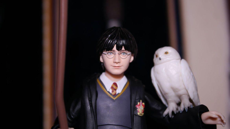 FOTF S.H Figuarts Harry Potter Review 16