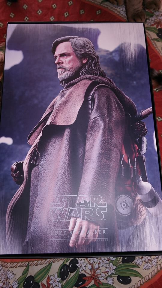Hot Toys Luke Skywalker Review 3